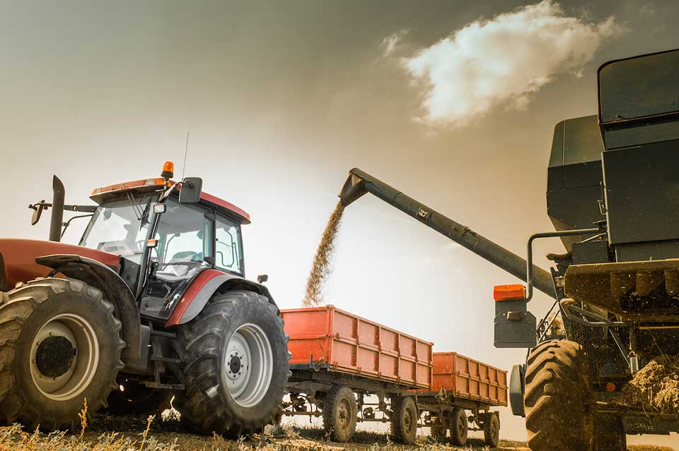 Seasonal Changes: Harvesting and Worker Safety