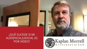 AUDIENCIA TRIBUNAL POR VIDEO